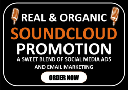 4360I will do organic soundcloud music promotion to music lovers